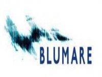 Blumare Vela