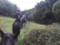 vieni a fare una passeggiata a cavallo