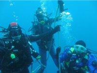 immergendosi insieme