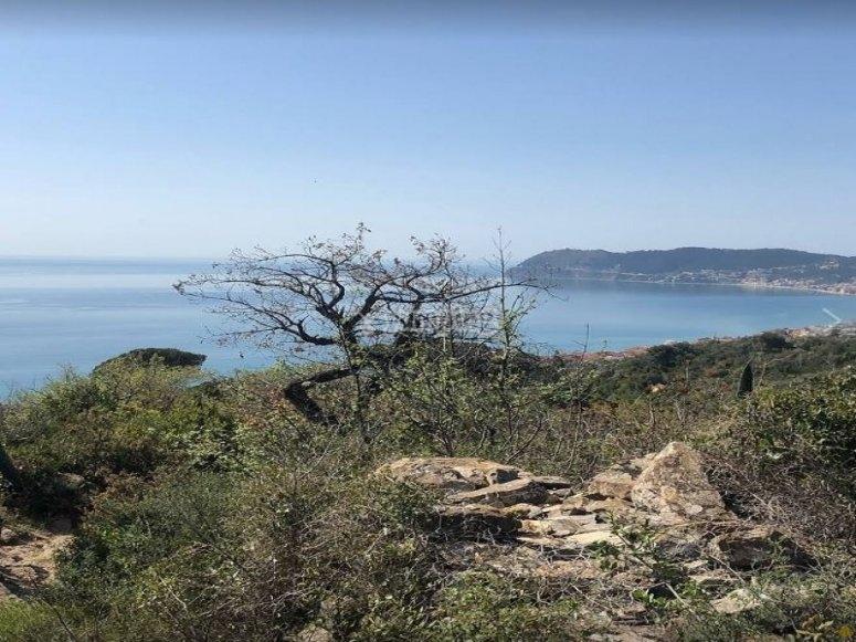 Insenature dell' Isola di Gallinare con il noleggio di un gommone