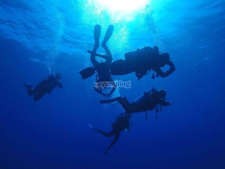 Corso reactivate del PADI Open Water Diver