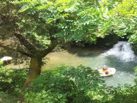 Canoe and bird watching excursion on the Sele river 3 hours