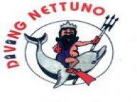 Diving Nettuno