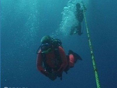 Blue Star Dive Club