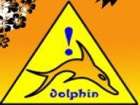 Dolphin's Windsurf School Kayak