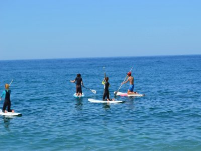 Kite Salento A.S.D. Paddle Surf