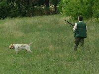 A Caccia Con Il Cane