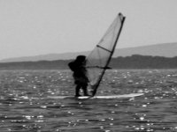 Windsurf experts