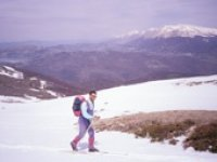On the snowy mountains