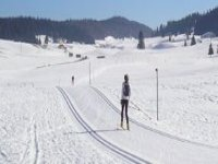 Cross-country skiing courses