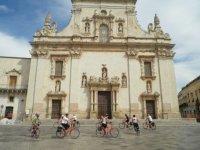 Group bike trips