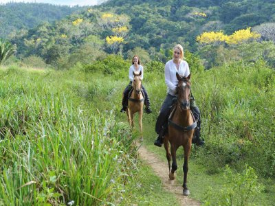 La Ferrera Agriturismo Escursioni a Cavallo