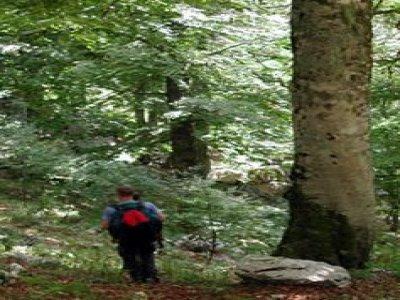 Ecotur Trekking