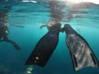 aquatic movements.JPG