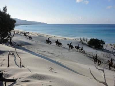 Il Quinto Moro Passeggiate a Cavallo