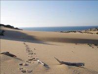 Verse the spiaggia