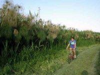 In bici nell Oasi del Ciane