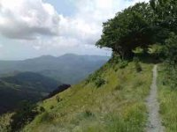 La Via del Sale da Torriglia al Rifugio Uscio