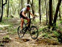 Freride in bici
