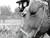 il cavallo diventera il tuo compagno d'avventura
