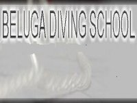 Beluga Diving School