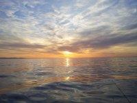 battute di pesca nel mar ligure