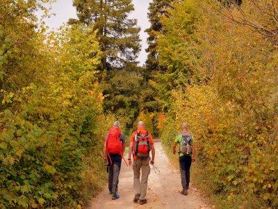 Trekking al Parco Nazionale dello Stelvio, 6 ore