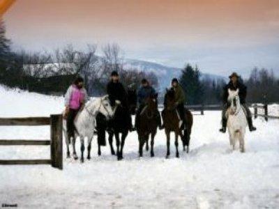 Centro Equitazione Alpina Val di Sole