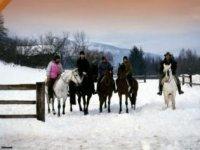A cavallo in inverno