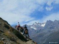 A cavallo in montagna