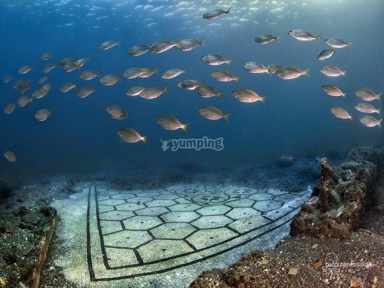 La natura e la vita subacquea