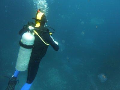 Discover scuba diving a Baia di mezza giornata