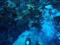 Palinuro diving