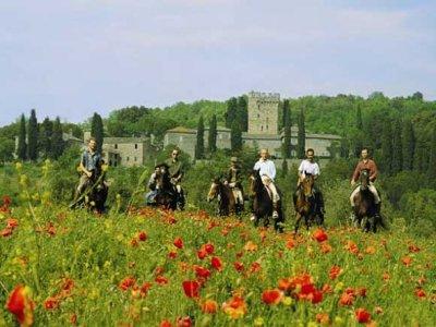 Equitazione tour da Montieri