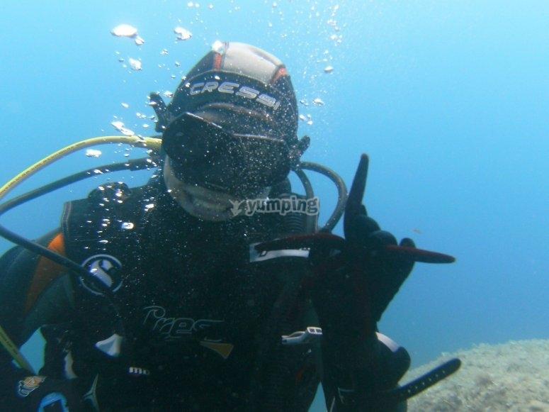 Become an expert diver