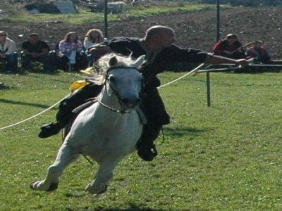 Arcieri a Cavallo Tiro con Arco