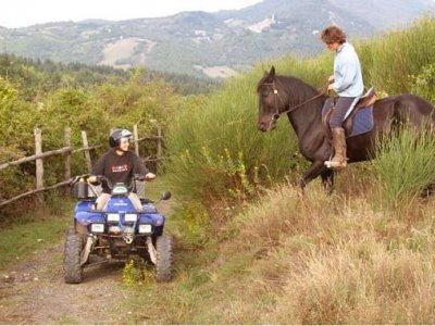 Equitazione 1 lezione a Montieri