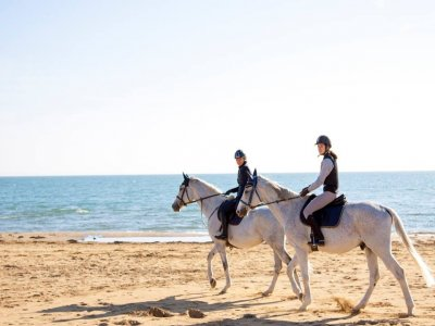 Centro Equestre Il Cavallino