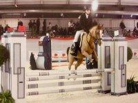 Competizioni salto ostacoli