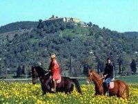 Passeggiata a cavallo 1h Montieri