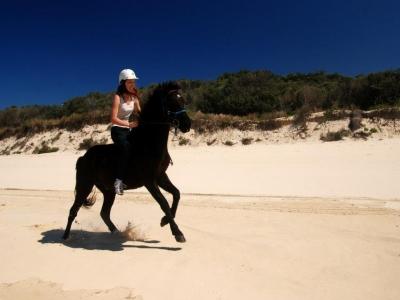 Escursione a cavallo con pic-nic (3h), Agro Romano