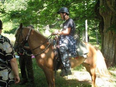 Mare & Monti Adventure Passeggiate a Cavallo