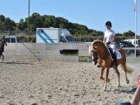 Le lezioni di equitazione nel circolo ippico