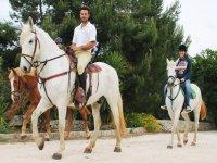 I nostri cavalli sono belli e mansueti
