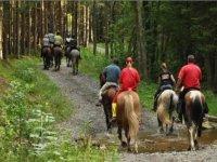 Equitazione escursioni