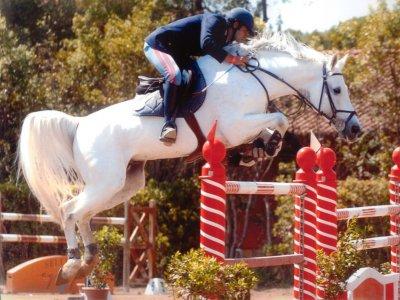 Equitation Roma