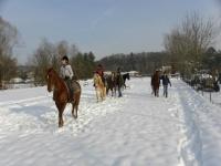 Un passeggiata a cavallo indimenticabile