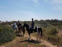 In fila a cavallo