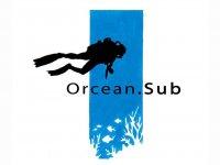 Orcean Sub