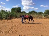Passeggiando con il cavallo